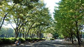 Akatsuka Parkの写真