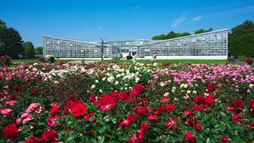 Jindai Botanical Gardens の写真