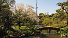向島百花園の写真