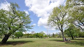 Musashi Kokubunji Parkの写真
