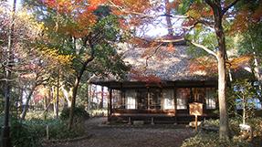 蘆花恒春園の写真