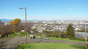 樱丘公园の写真