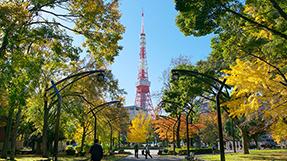 Shiba Parkの写真