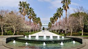 시오카제 공원の写真
