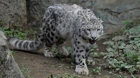 다마 동물 공원の写真