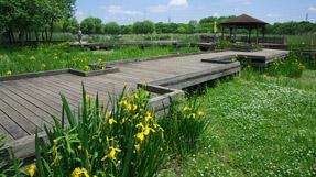 舍人公園の写真