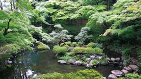 殿谷户庭园の写真