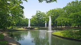 요요기 공원の写真