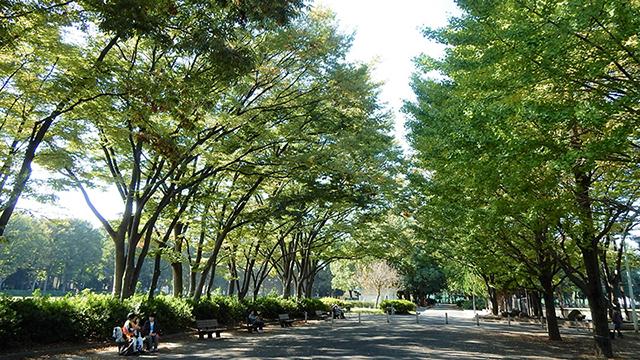 아카쓰카공원