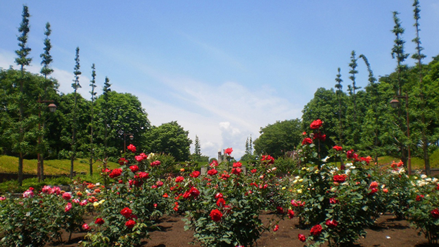 Akirudai Park
