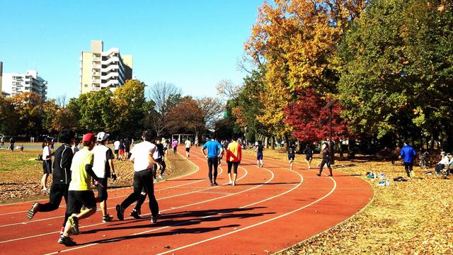 Higashiyamato-Minami Park