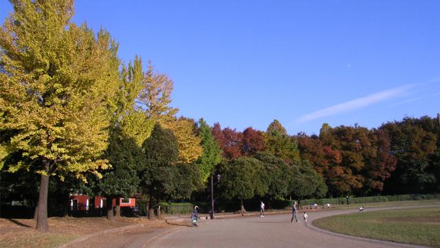 조호쿠추오공원