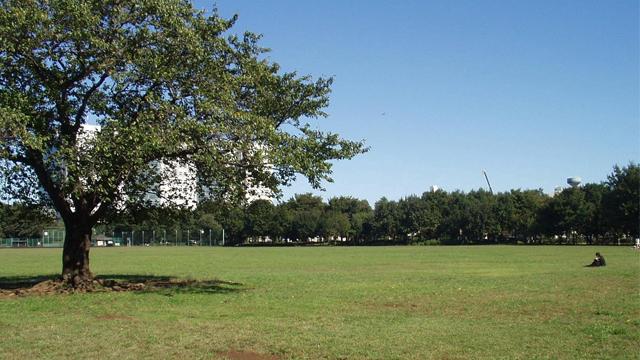 Musashino-Chuo Park