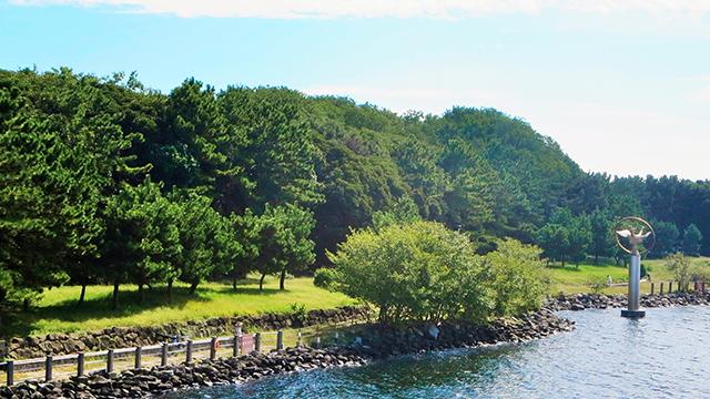 大井ふ頭中央海浜公園(なぎさの森)