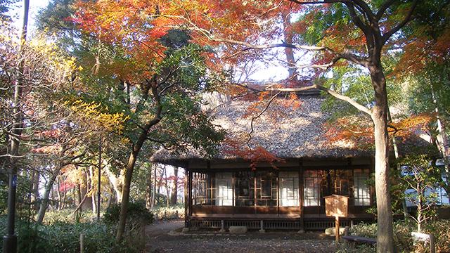 로카코슌엔공원