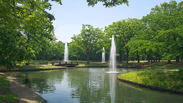 요요기 공원